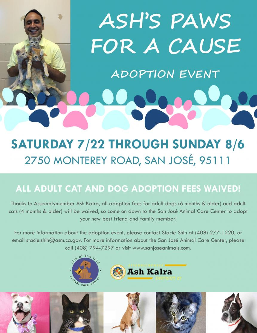 Ash's Paws for a Cause Adoption Event